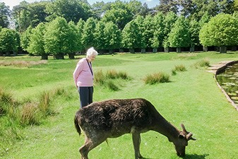 York Lodge visit to Dunham Massey